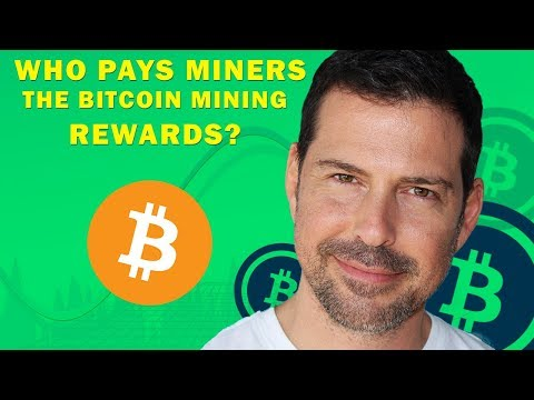 George Levy - Who Pays Miners The Bitcoin Mining Rewards?