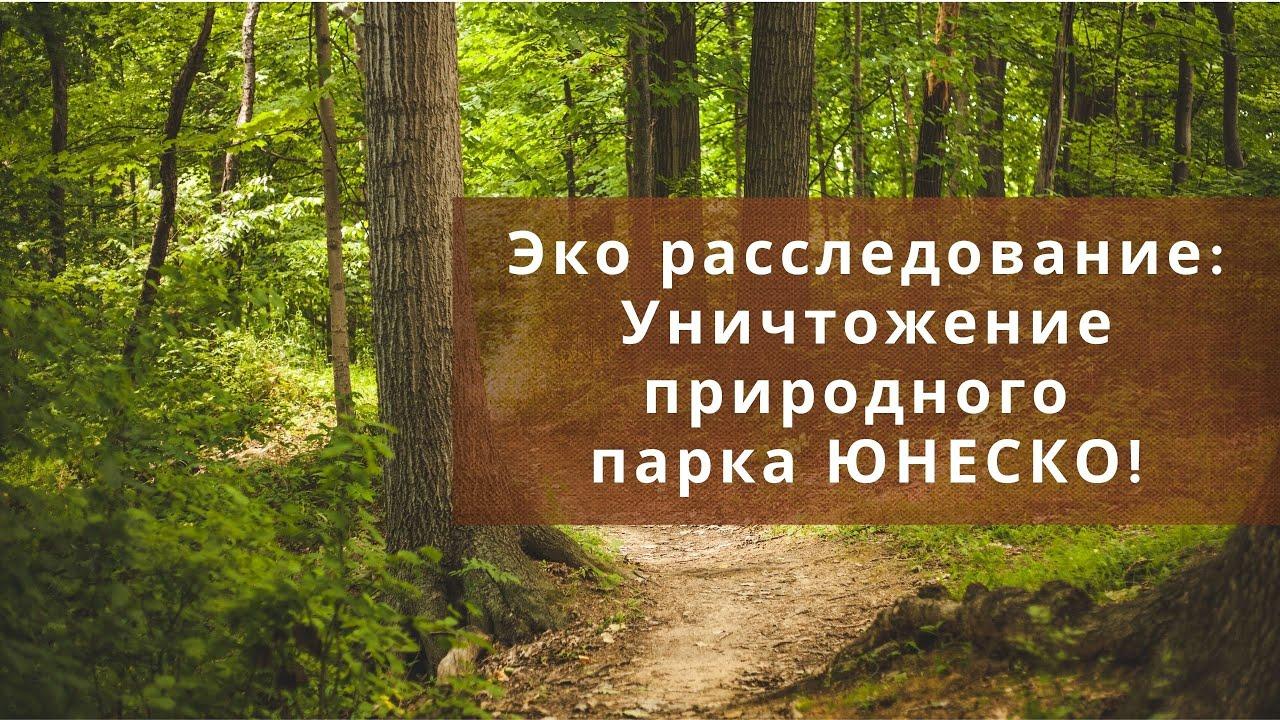 Эко расследование: Уничтожение природного парка ЮНЕСКО!