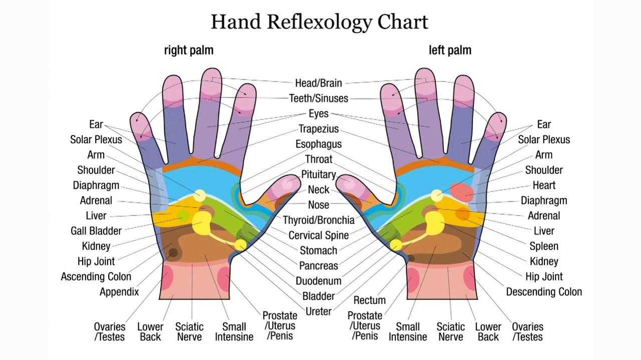 Très bien Reflexologie palmaire - Acupression - Massage des mains - Carte #WL_07