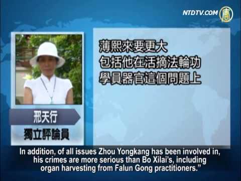 Taking Down the Tigers, Zhou Yongkang Under Investigation