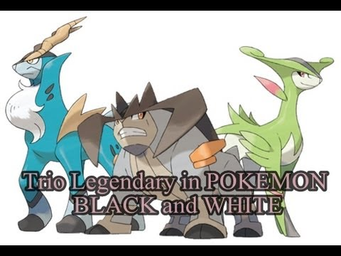 How to Catch: Trio Legendary Cobalion Terrakion and ... Legendary Pokemon Black And White
