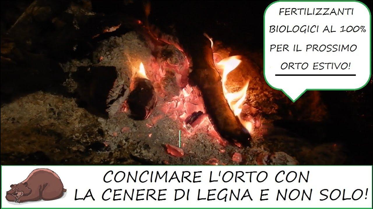 Cenere Di Pellet Nell Orto la cenere di legna per concimare l'orto e non solo!