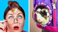 Как пронести животных в школу / 8 пранков и лайфхаков для животных