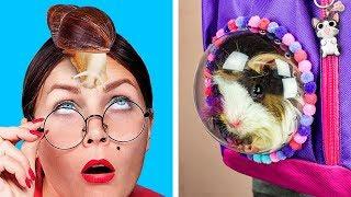 Видео Как пронести животных в школу / 8 пранков и лайфхаков для животных