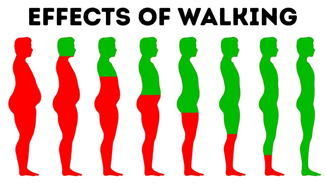 14ad6b292c What Will Happen to Your Body If You Walk Every Day - YouTube
