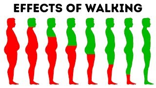 What Will Happen to Your Body If You Walk Every Day