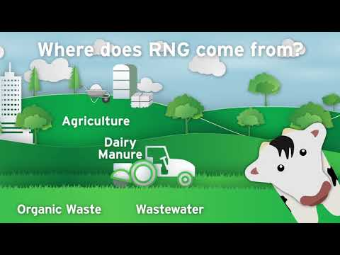 Digesting The Facts About Renewable Natural Gas