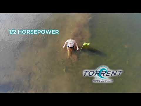 Weed Razers - Torrent – Muck Control Blower