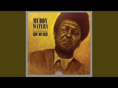 Little Anna Mae (feat. Otis Spann, Sam Lawhorn, Mojo Buford & Luther Johnson) (Remastered) Mp3