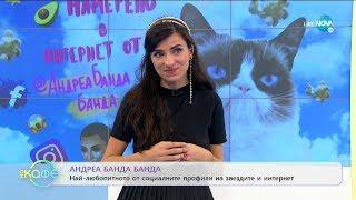"""Андреа Банда Банда: Най-любопитното от социалните профили на звездите - """"На кафе"""" (10.03.2020)"""