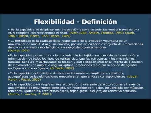 flexibilidad definicion