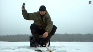 Рыбалка на озере ЛОМПАДЬ Калужская область