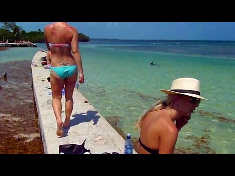 LIFE IN BELIZE: One Day in Tropical Island Paradise