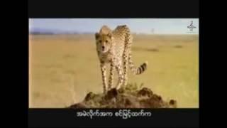 Lay Phyu - Hunting dance Karaoke (ေလးျဖဴ - အမဲလုိက္အက)
