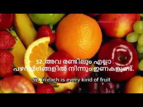 surah ar rahman beautiful recitation malayalam translate