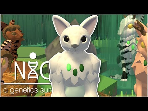 The Warmth of the Family Nest • Niche: Snowy Mountain Update! - Episode #26