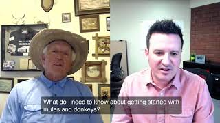 Getting Started with Mules and Donkeys, English Style with Mules, Mollys or Johns, and Much More!