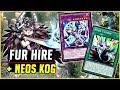 REI DOS JOGOS! - PELUGUEL COM NEOS - Yu-Gi-Oh! Duel Links #538