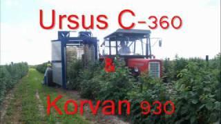 Zbiór malin 2010 Ursus C-360 & Korvan 930