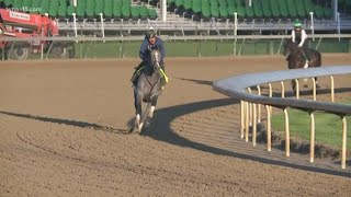 Tacitus works out at Churchill Downs