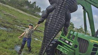 Найден Самый Огромный Крокодил в Мире / Аномально Большие Животные