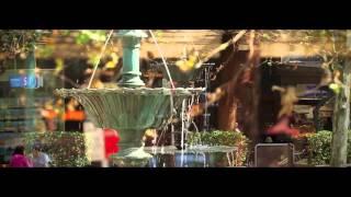 [HD] 호주 시드니 코리아타운(한인타운)