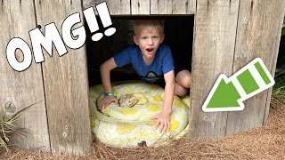 6 Year Old Sneaks into Python Cage!!!...and then this happened