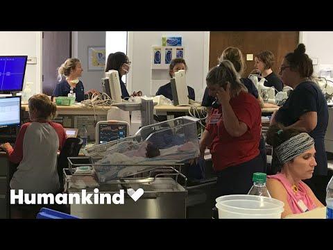 Nurses protect 19 babies as hurricane rages outside   Humankind