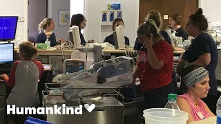 Nurses protect 19 babies as hurricane rages outside | Humankind