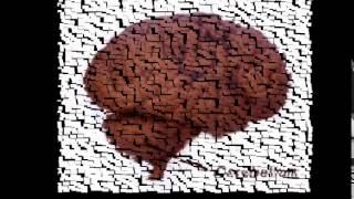 Declarative and Procedural Memory