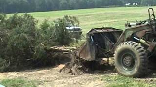 Pushing Down Tree with Hough 90C Wheel Loader