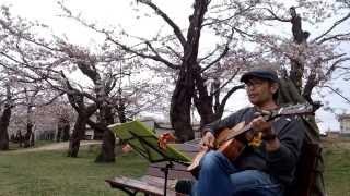 昨年に続き、五稜郭公園での路上ライブ?です 今回は桜に関係なくこれを...