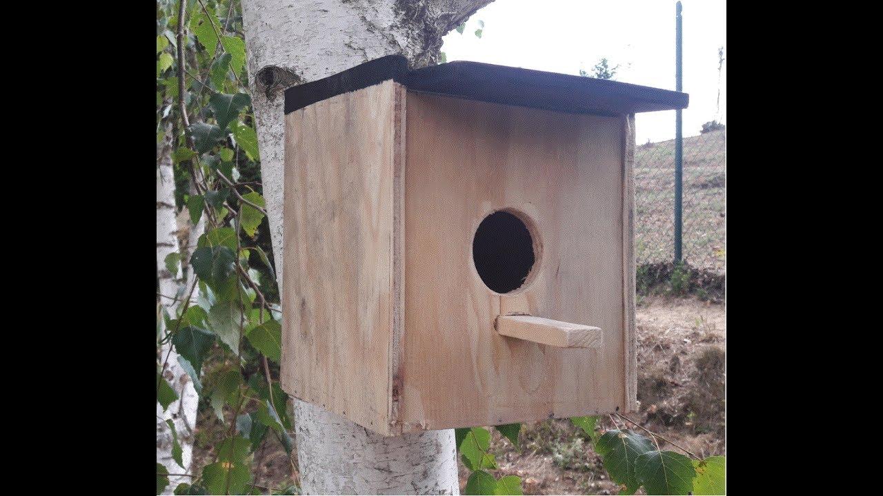 Casetta Uccelli Fai Da Te Diy Bird House Youtube