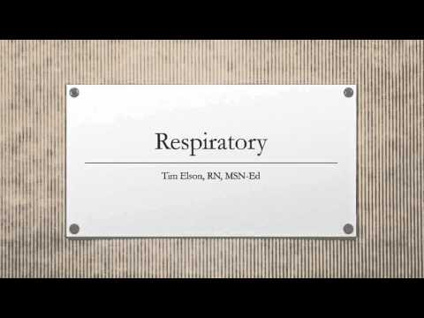 respiratory ppt  voice over