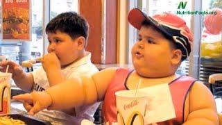 Jak souvisí jídlo s obezitou?