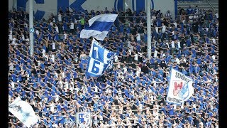 Support: 1.FC Magdeburg
