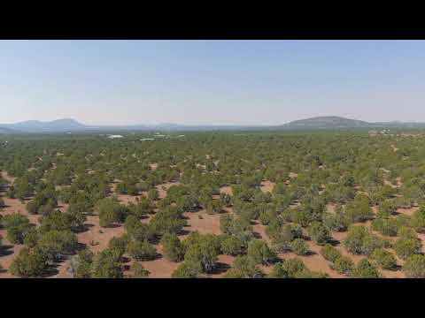 36.27 Acres – With City Water and Power! In Vernon, Apache County AZ