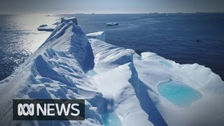 Defence wants to put military tech in Antarctica despite Treaty ban | ABC News