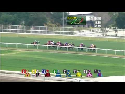 【4YO Classic Series】RAPPER DRAGON wins the Hong Kong Classic Cup 2017
