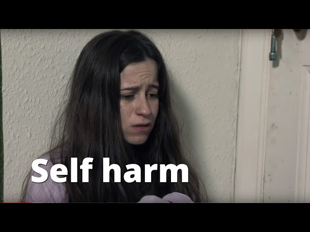 Mental health awareness e-training for emergency staff - Self harm