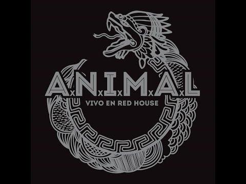 A.N.I.M.A.L. - Vivo en Red House (2016) (Full Album)