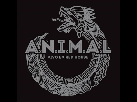 animal vivo en red house 2016 full album - Red House 2016