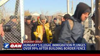 Hungary's illegal immigration plunges over 99% after building border fence