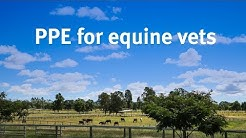 PPE for equine veterinarians