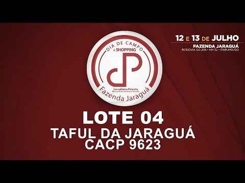 LOTE 04 (CACP 9623)