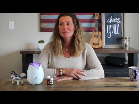 diffusing-thieves-&-purification-essential-oils