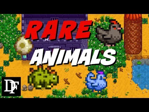 Rare Animal Guide - Stardew Valley Gameplay HD
