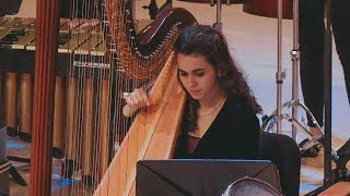 Battle for Joy - Concerto for Harp and Percussion