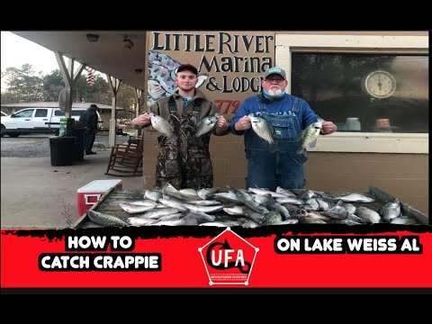 Long Line Trolling For Crappie Lake Weiss