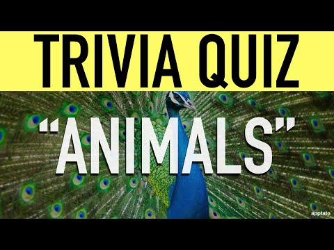Animal Trivia Questions and Answers (Animal Trivia Quiz) | Family Trivia Game Night